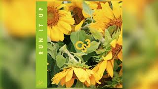 Eric Bellinger - Run It Up