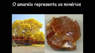 Hino de Aparecida de Goiânia-GO 09-05-2013 - Gleida Barros
