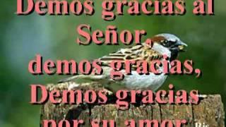 ACCION DE GRACIAS, DEMOS GRACIAS AL SEÑOR [CORO-ICCC]