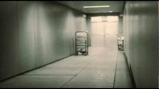 Nemesea - Afterlife single