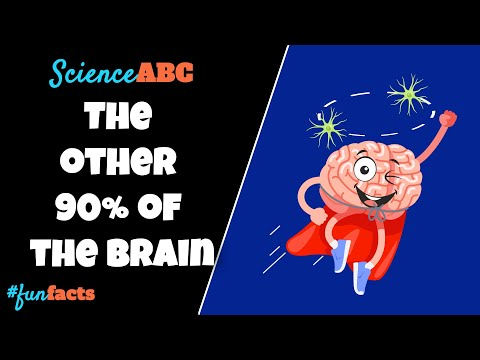 What's the Mysterious & Super Awesome Thing That Occupies 90% of Your Brain?