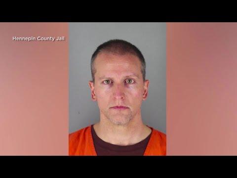 Minneapolis: Derek Chauvin mugshot released | AFP