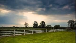 Crazy English Summer (Original Version) - Faithless