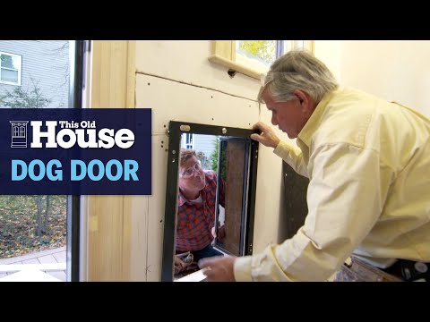 How to Install a Dog Door for a Large Dog | This Old House