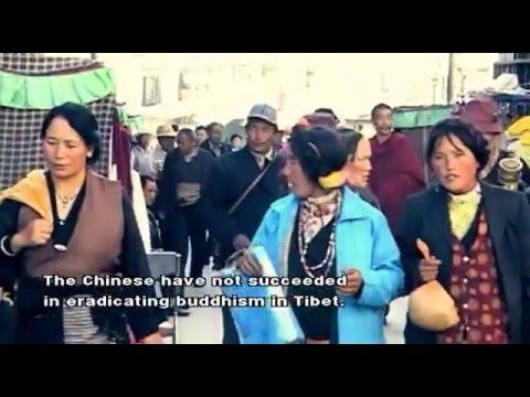 Madventures Tibet 3/3 *english subtitles*