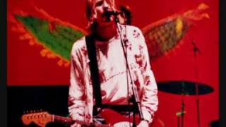 Nirvana - Something in the Way(Live)
