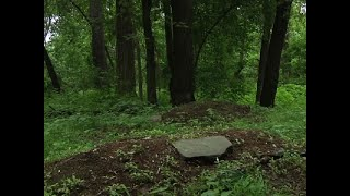 Forever Green: Cemeteries Offer Natural Burials