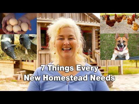 7 Things Every New Homestead Needs