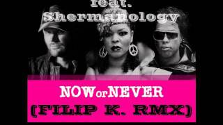 Funkerman feat. Shermanology - Now or Never (Filip K. RMX)