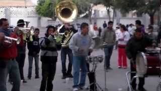 Banda Vientos de Jalisco