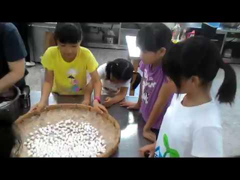 花蓮縣中正國小403班親會食農教育及米食製作搓湯圓和包菜包體驗 10 - YouTube