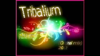 Tribalium-Danprod(original mix) Dj&producer