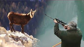 Hunting Chamois | Lov na divokozu - Lovište Tara | Chasse Chamois | Caccia camosci