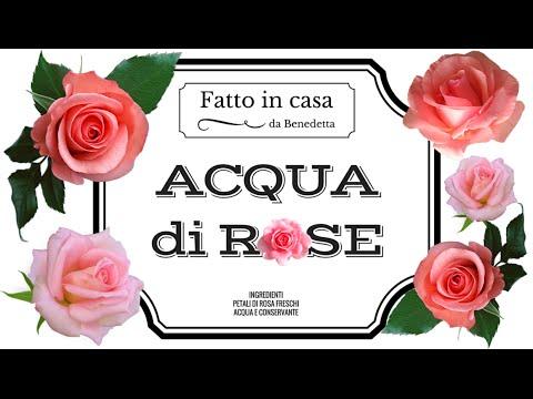 Come Fare L Acqua Di Rose Fatta In Casa Fai Da Te Mania