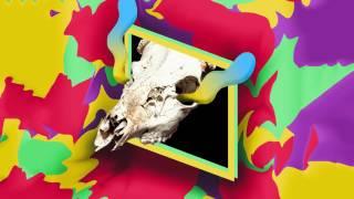 Savoy - Living Color Ft. Fatherdude (2ToneDisco Remix)
