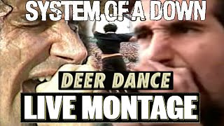 System Of A Down - Deer Dance LIVE MONTAGE 【2002-2015】