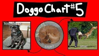 Doggo Chart - Part 5