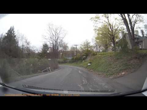 Deer Crash TS P0363