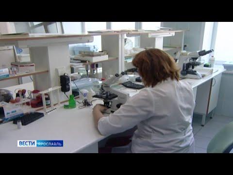 Правительство России выделило Ярославской области более 113 миллионов рублей на доплаты медикам