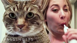 Cat Lady Gets Trapped With No Internet For 90 Hours // Sponsored By Passengers Movie
