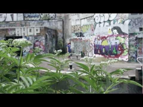 regina-ape-operaia-official-videoclip-trb-rec-andrea-tognassi
