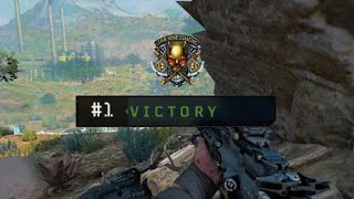 Blackout out stuped win