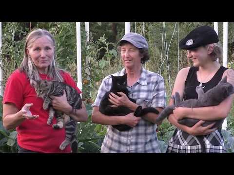 Adventures in High Performance Gardening | Week 24