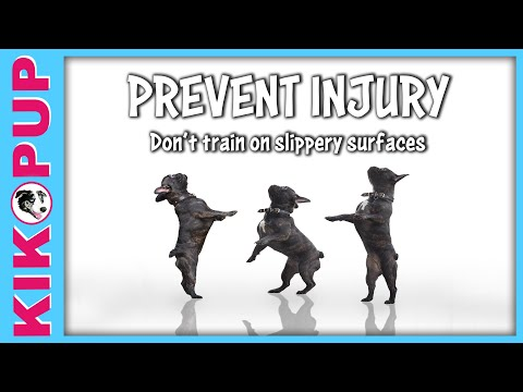 What surface do professional trainers choose for dog and puppy training?
