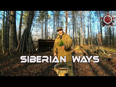Natures Pharmacy And Siberian Native Woodcraft