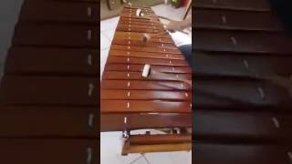 Despacito version Marimba (Daddy Yankee ft. Luis Fonsi 2017)
