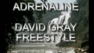 please forgive me remix - Adrenaline ft David gray