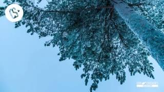Vicetone - Nothing Stopping Me (Oli Hanson Remix)