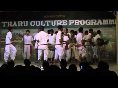 Tharu Culture Dance (part 2)