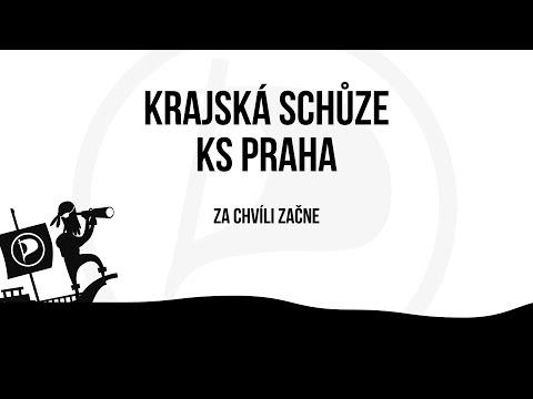 Krajská schůze Pirátů Praha únor 2021