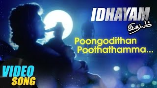Poongodithan Full Video Song | Idhayam Tamil Movie Songs | Murali | Heera | Ilayaraja | Music Master