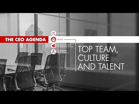 The CEO Agenda: Top Team, Culture and Talent