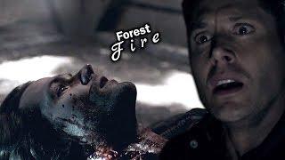 Sam & Dean • I Should've Saved You {+13x21} Supernatural