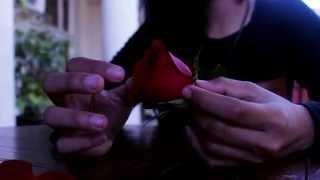 UNDO - SANNA NEILSEN (MUSIC VIDEO COVER - by ANASTASIA ADVENIA & FRIENDS)