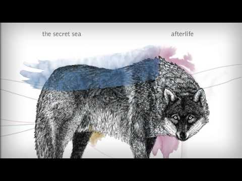 The Secret Sea Afterlife Chords Chordify