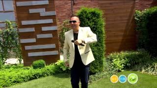 Bódi Csabi: Gyémántból házat építek - 2015.06.09. - tv2.hu/fem3cafe
