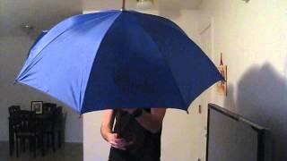 The Blue Umbrella-from the Pixar Studio Store-Real working umbrella!
