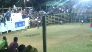 Monta en Belén de Carrillo último día de fiestas