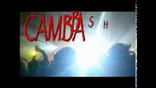 CAMBA'S BIRTHDAY BASH 2013 Saturday, September 14, 2013 8:00pm
