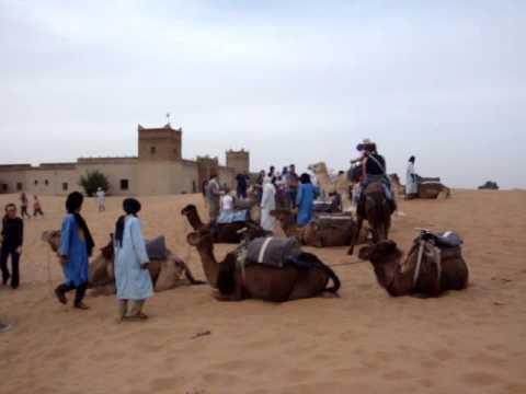 Camel Trekking Merzouga Sahara Desert Morocco