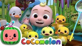 Five Little Ducks 2 | Cocomelon (ABCkidTV) Nursery Rhymes & Kids Songs