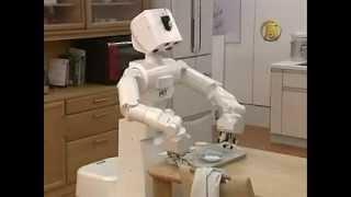 Japanese Robot Maid