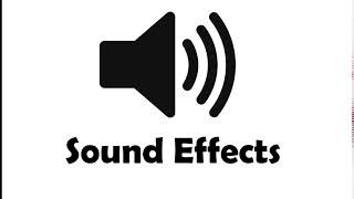 Sound Effect - Audience laughing 1