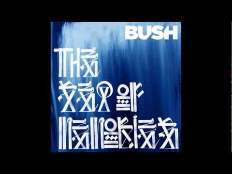 bush-ghost-the-sea-of-memories-2011-patricia-maximino