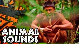 Tribal Sounds