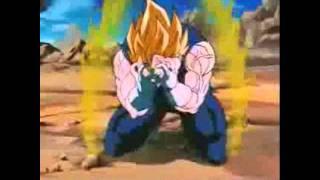 Dragon Ball Z Skillet Monster
